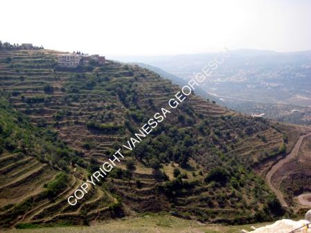 montagnes autour de Crac des Chevaliers, Syrie
